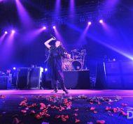 Evanescence027