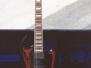 Gitary Jamesa ESP LTD Viper Baritone