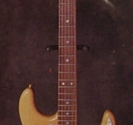 "Natural-""Hetfield""-Stratocaster-style.jpg"