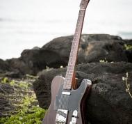 Fender Telecaster '69 (1) (drzewo rozane)