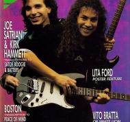 Fernandes Stratocaster #4 (1)