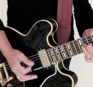 Gibson ES-345 (1)